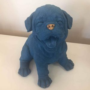 BLUE LAUGHING DOG