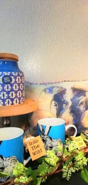 Thompsons Lightinng Northern Ireland gift shop cushions mugs lighting